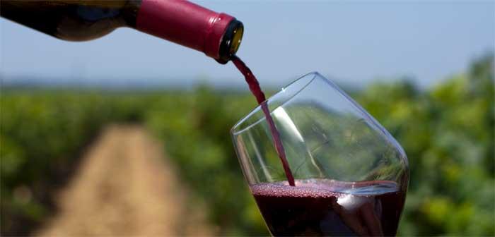 Le vin, bon pour la santé