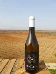 Vin blanc Hacienda Molleda Blanco Garnacha